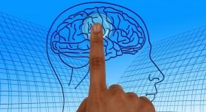 Mitos en Psicología